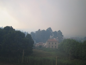 Xiabre_durante_incendios