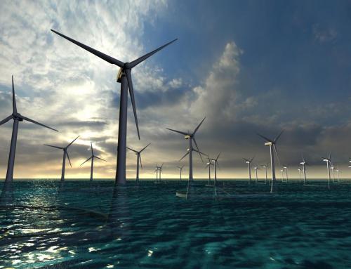 Rexeitamos a instalación de parques eólicos mariños en caladoiros de pesca de baixura